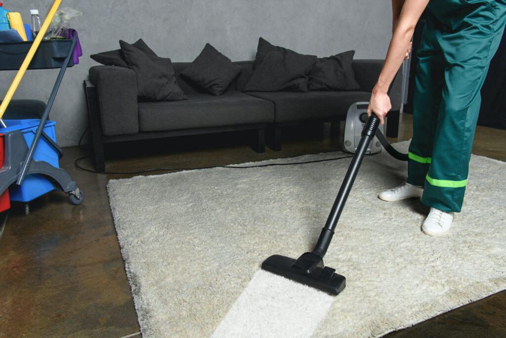 cropped shot of person using vacuum cleaner while cleaning white carpet